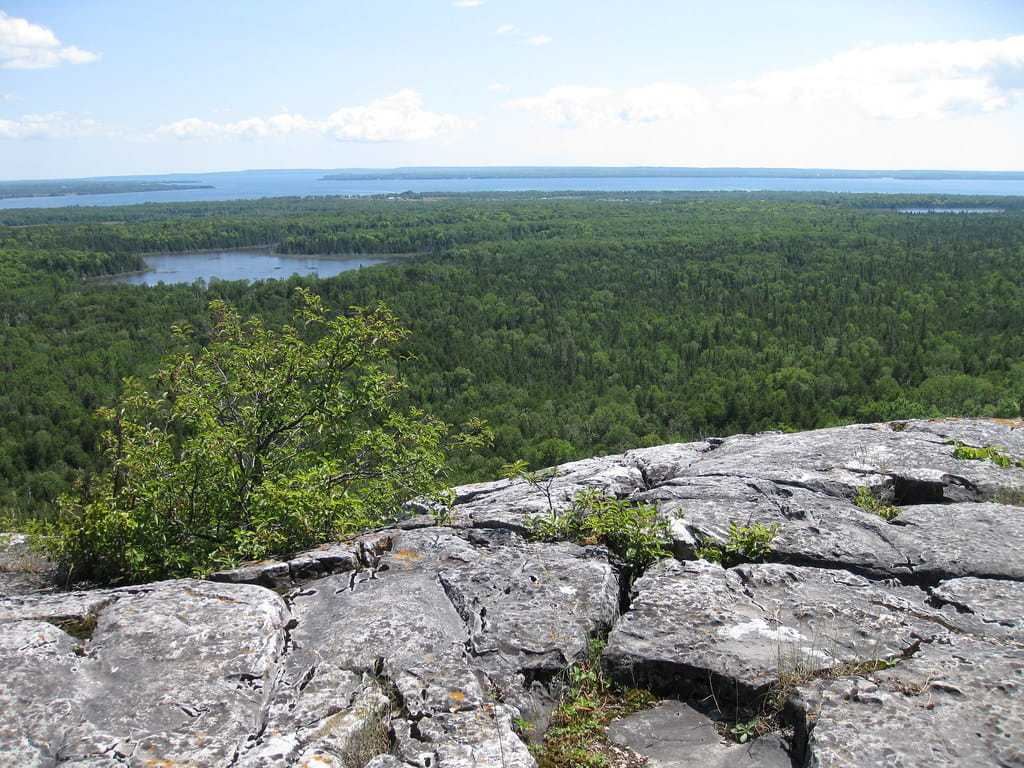 View of Manitoulin's forest below from atop Cup and Saucer